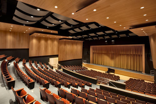 Auditorium Acoustics Design and Installation